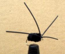 Bully's Bluegill Spider - Black