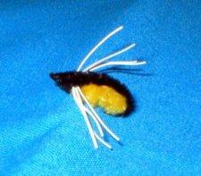 Humbug-Grubby Bug