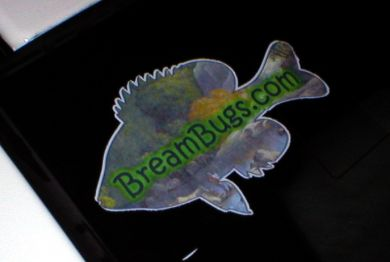 BreamBugs.com Decal