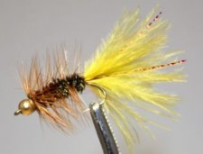 The Ozark Woolly Bugger