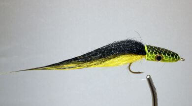 Pultz Slider Yellow and Black