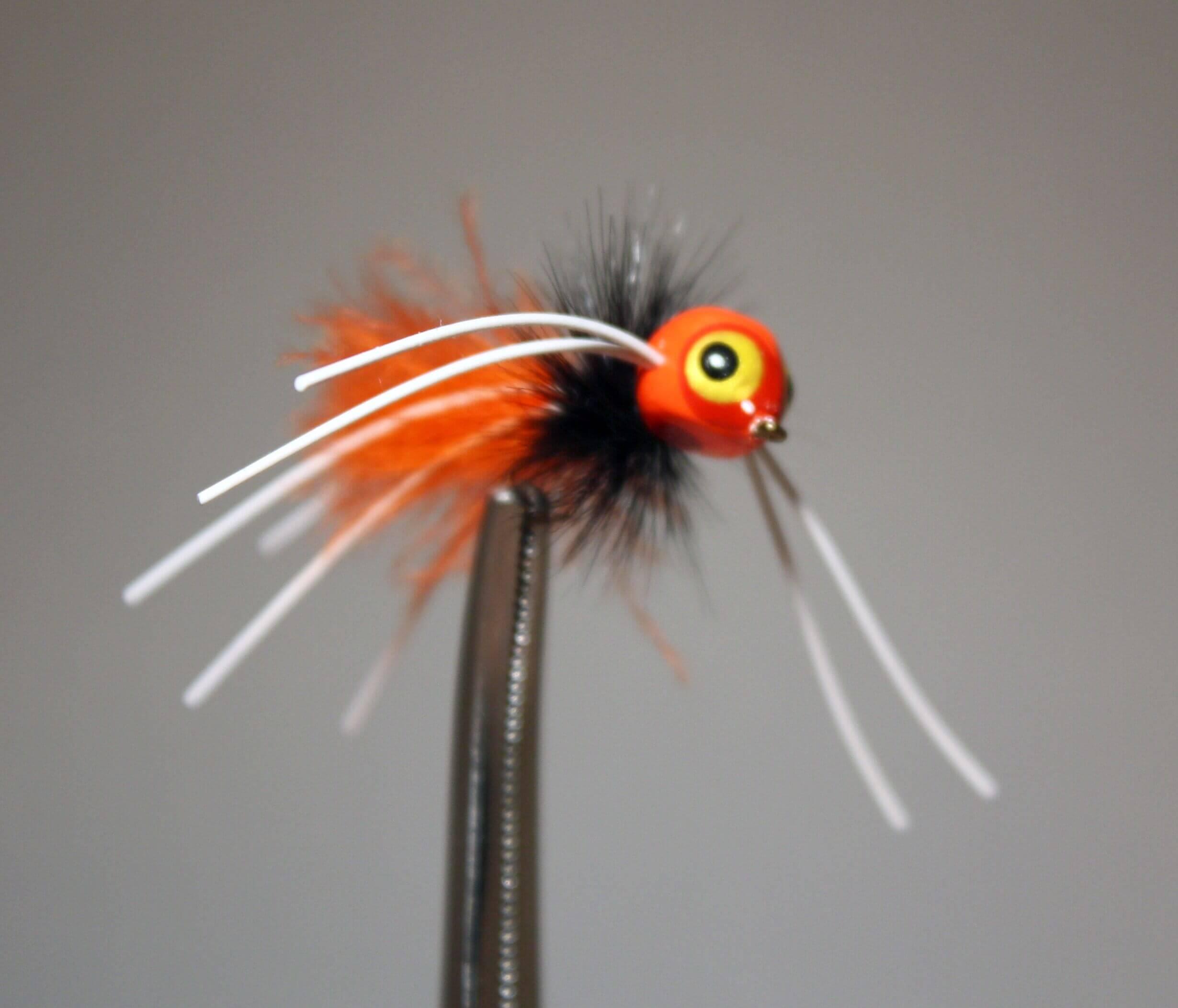 Rollie Pollie Orange and Black bug