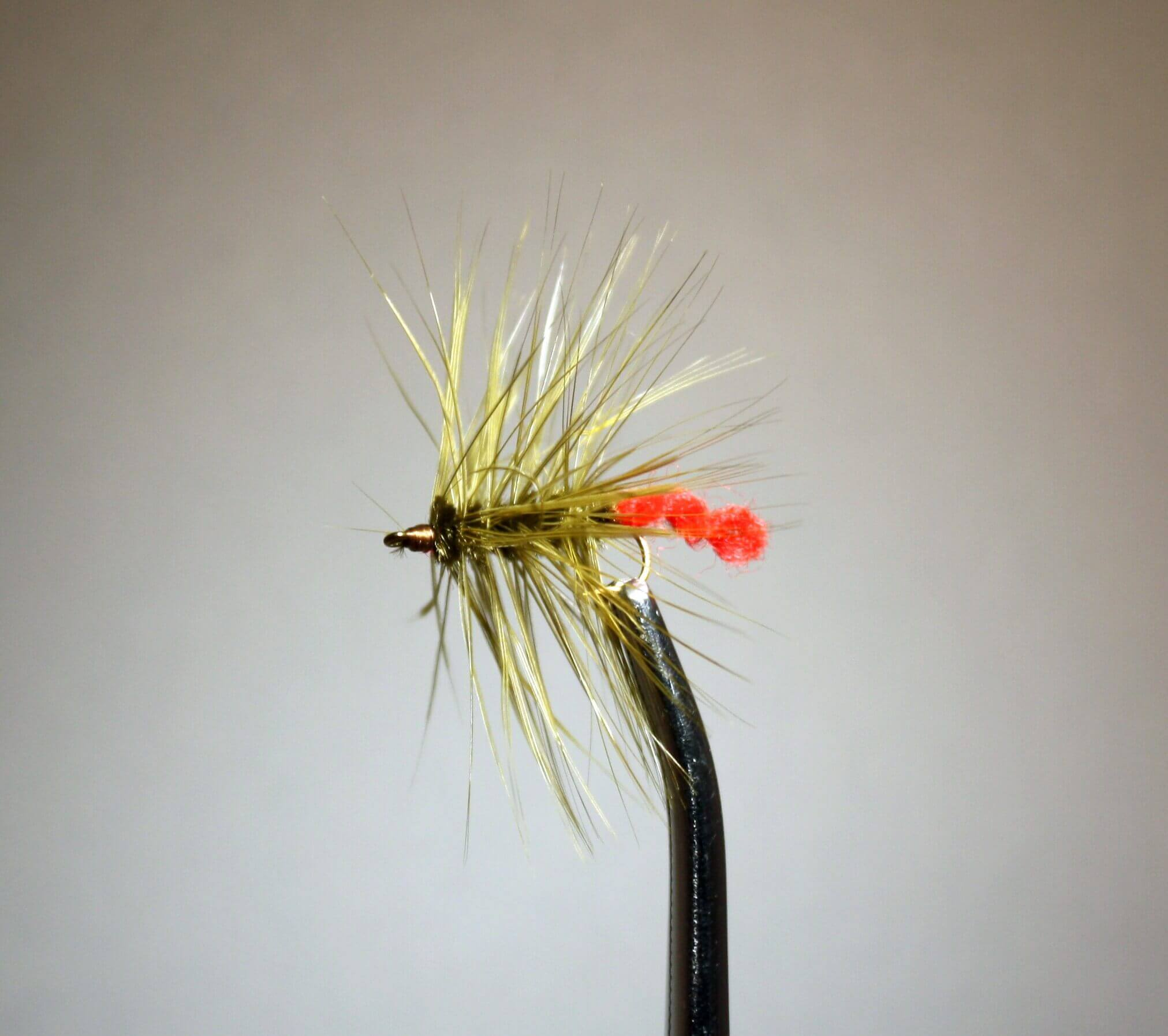 Wooly Worm Olive and Red