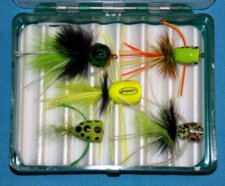 Bass Popper Assortment