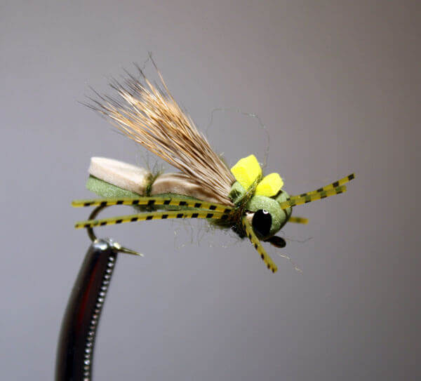 Swan Creek Hopper