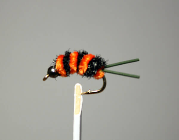 Jitter Bee Orange and Black