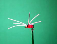 Pearson's Spider