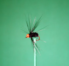 Hackle Fly