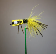 Mad Scientist Fly Yellow and Black
