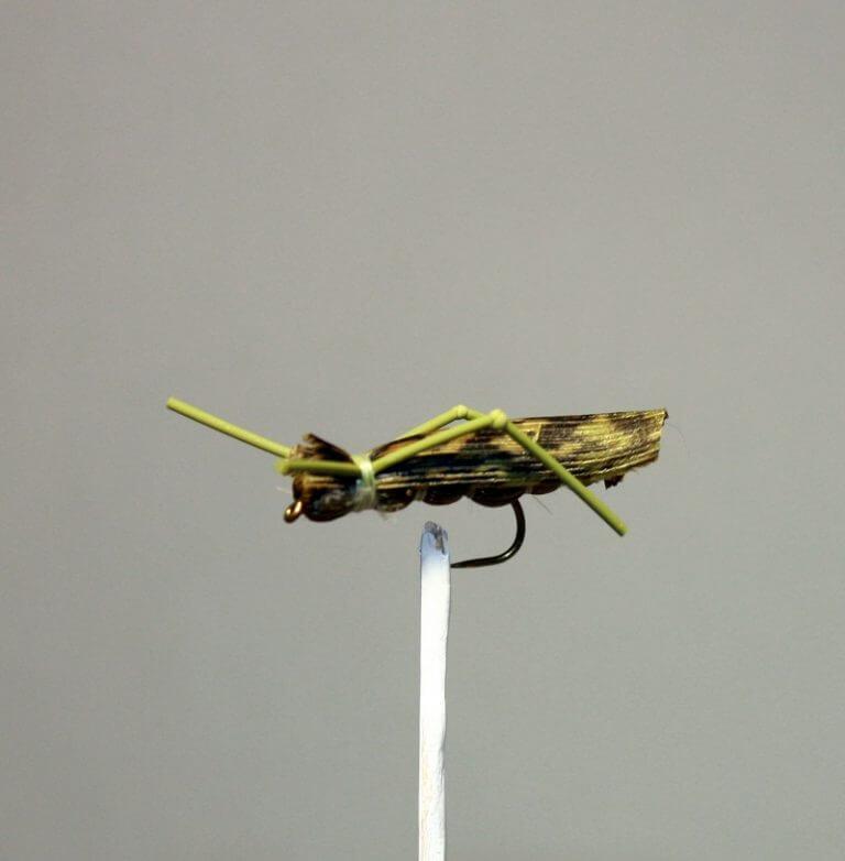 Olive Hopper from Spring Creek