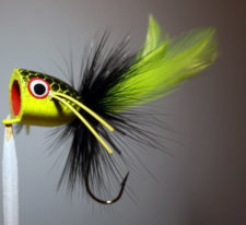 Chartreuse, Black, Chartreuse Bass Popper