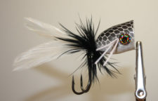 Black and White Bass Popper