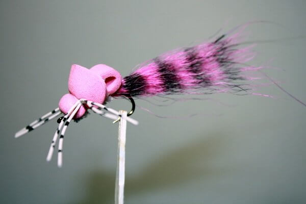 Pink Lady Fly