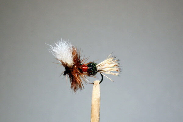 Royal Wulff trout fly from RIO