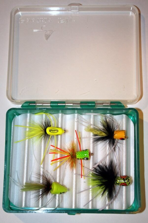 Uncle Don's Favorite Bugs Assortment