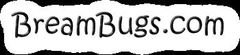 Breambugs.com