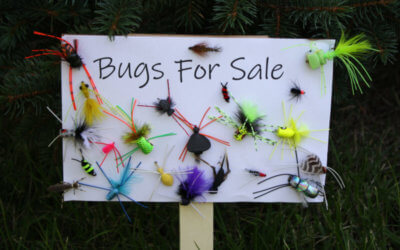 Bugs For Sale . . . Yes, We Have Bugs For Sale