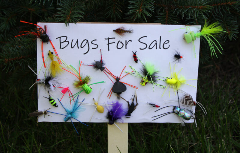 Bugs For Sale