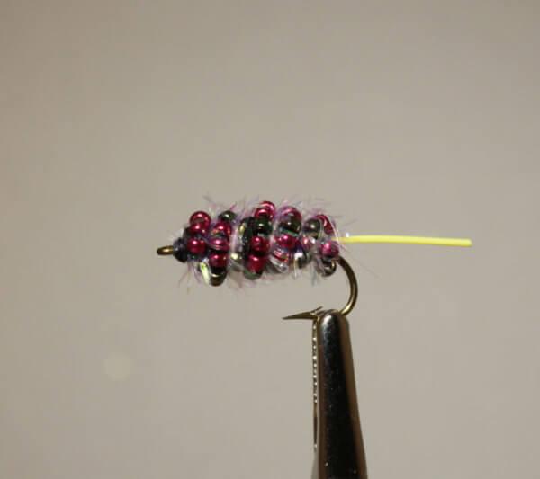 Mutant Mulberry Carp Fly