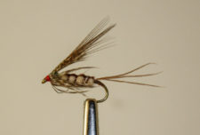 March Brown Emerger