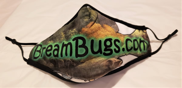 Face Mask From BreamBugs