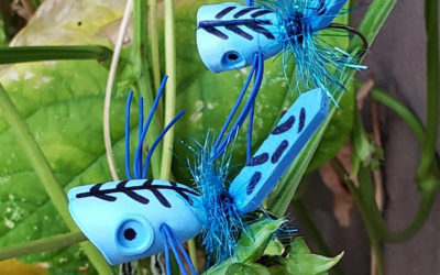 Ivey's Blue Dragon Fly