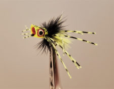 Little Fatty Chartreuse, Black, Chartreuse Spider Legs