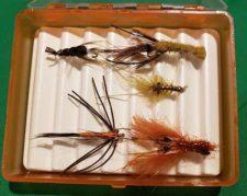 Crayfish Assortment