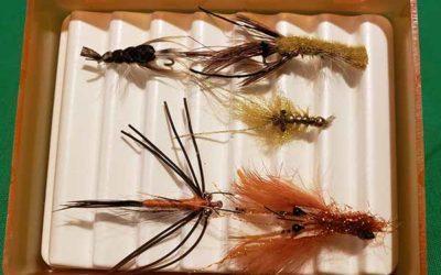 Crayfish, Crawfish, Mudbugs, Craw-Dad