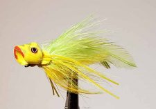 Rio Charty Yellow