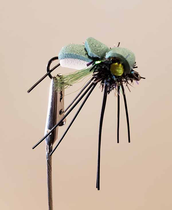 Annual Cicada Fly-Olive