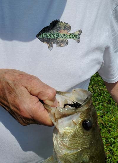Does Wearing A BreamBugs T-Shirt Help You Catch More Fish?